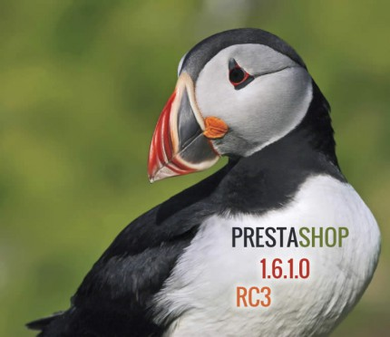 ps-puffin